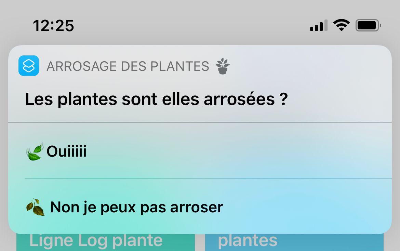 Exemple d'affichage de la notification
